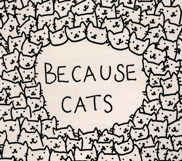 Because Cats- Society 6